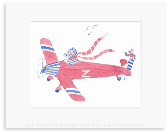 Zebra Flying Plane
