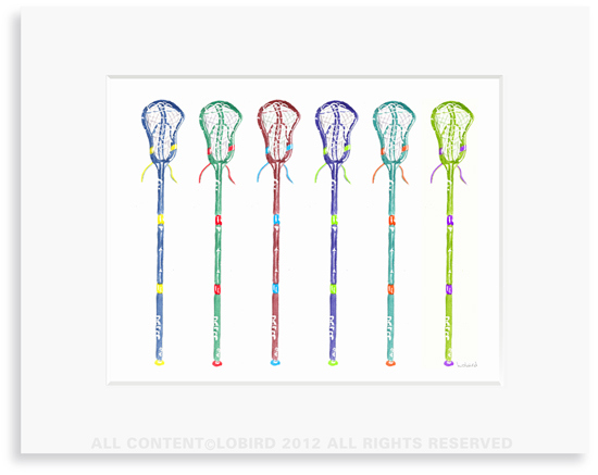 Lacrosse Stick collection 1